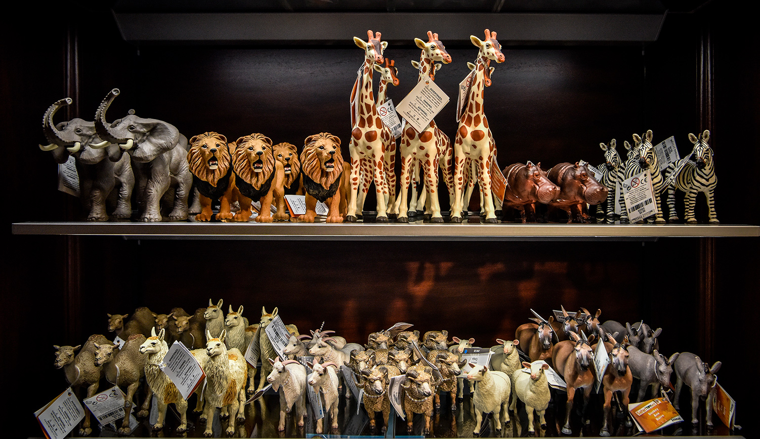Biblically themed toys at the gift shop for the Museum of the Bible. Bill O'Leary/The Washington Post via Getty Images.