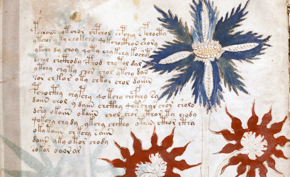 A page from the Voynich Manuscript. Wikipedia.