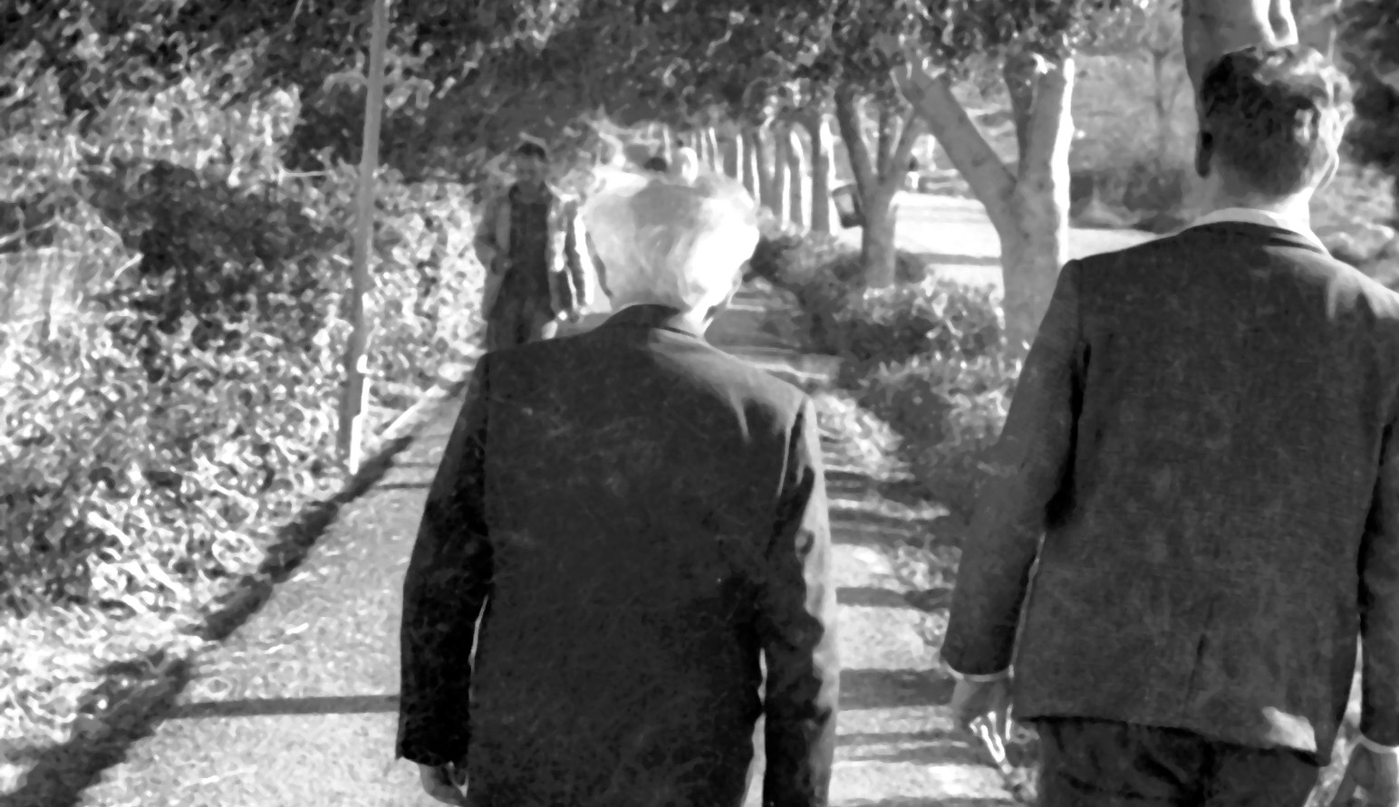 David Ben-Gurion with his bodyguard by the Sea of Galilee in 1969. The National Library of Israel, Dan Hadani's Archive [IPPA Staff].