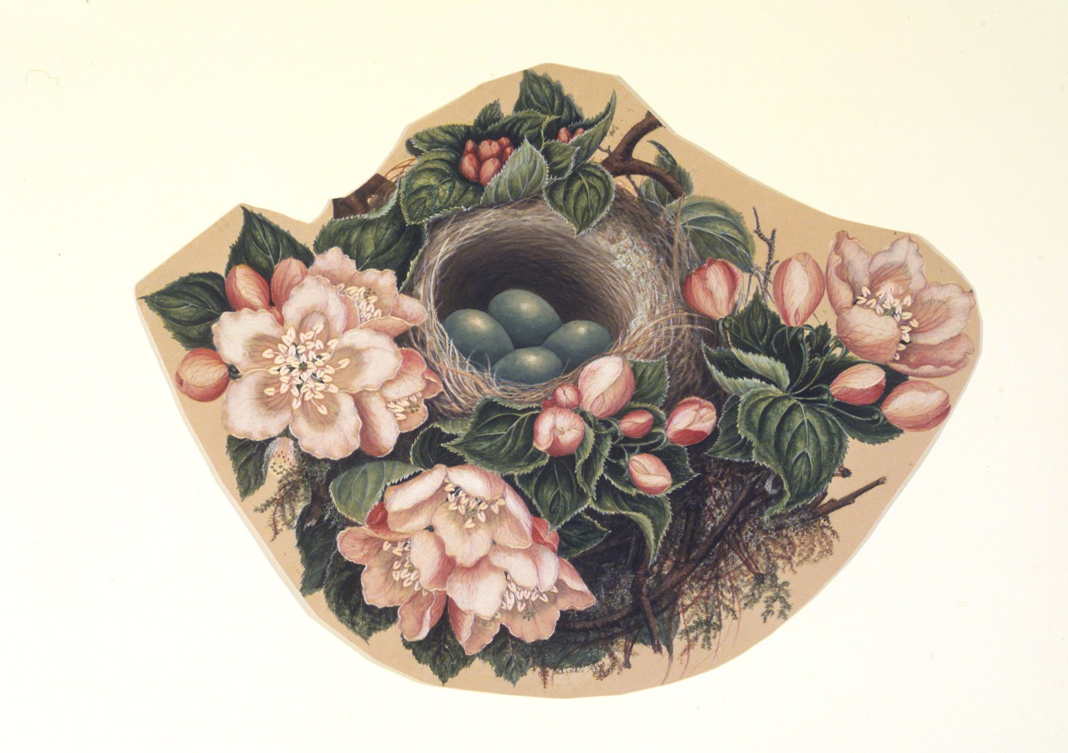 A watercolor, called Bird's Nest, by H. Lynde, 1862. Brooklyn Museum.