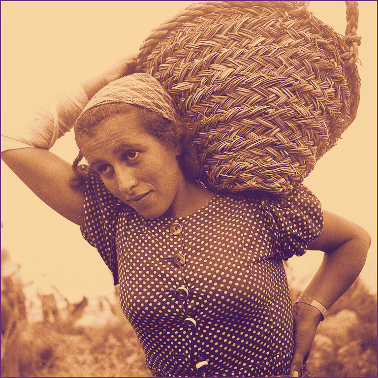 <em>A member of Kibbutz Ein Gev carrying a basket with gravel.</em> Photo by Zoltan Kluger. Courtesy Goverment Press Office.